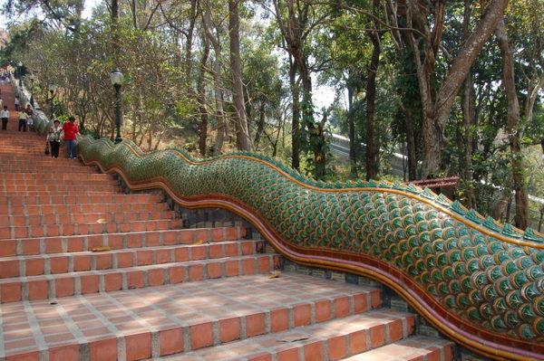 Naga dragons
